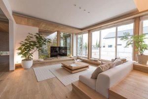 ต้นไม้ในบ้านหรือคอนโด